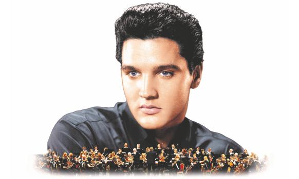 Elvis-582